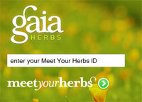 Gaia Meet Your Herbs